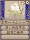 エターナルケープ(エーテル値100)